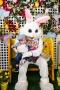 Easter-2911