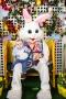 Easter-2950